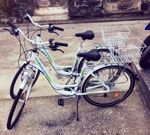 bicycle-rental